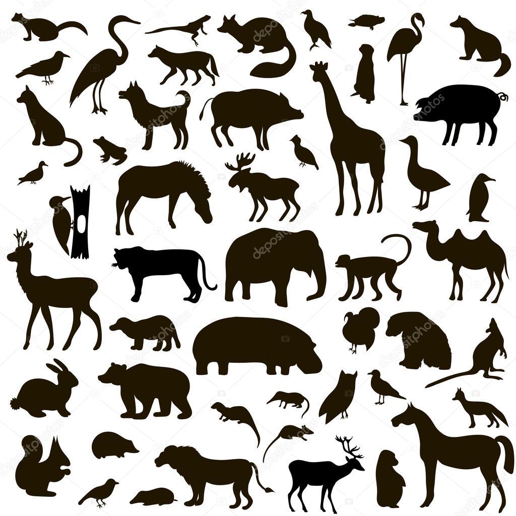 黒い動物と鳥のシルエットのベクター セット — ストックベクター