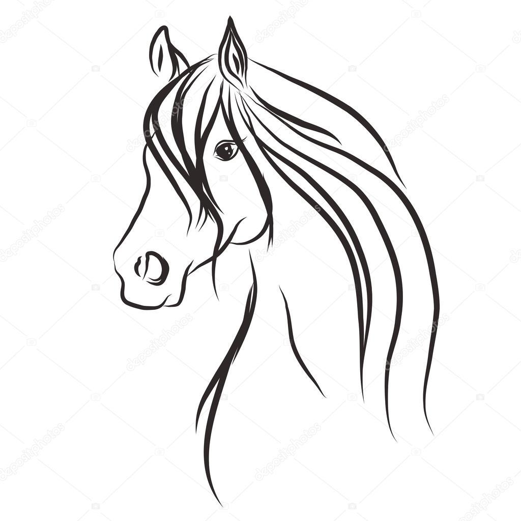 Horse Sketch Stock Vector C D Mero 79647684
