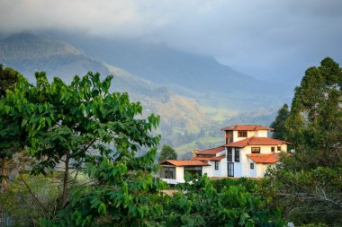 a house in the mountains, green jungle in the mountains, colombia, latin america