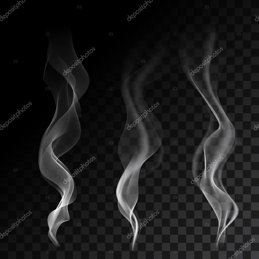 Light cigarette smoke waves on transparent background vector illustration