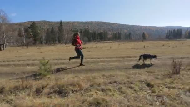 novice athlete walking with a running dog on a treadmill harness on the meadow, in the mountains and hills surrounded by dense forest and sun on video