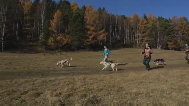Three adult athlete jogging with three racing dog running along a country road in the woods and mountains, dogs run ahead on the harness and pulled by an owner