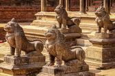 Lvi v chrámu