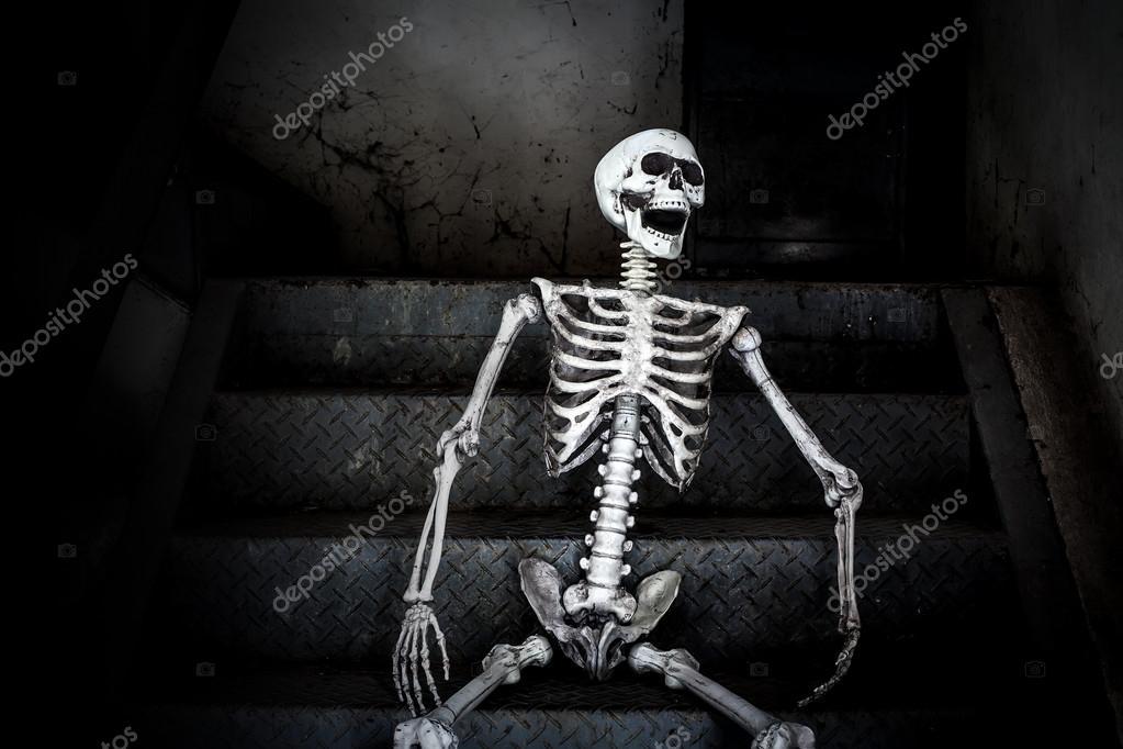 Life Size Skeleton Halloween