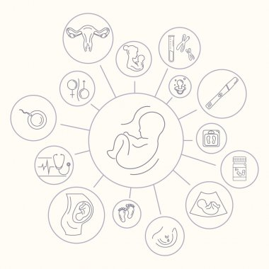 Medicine and pregnancy vector line icon