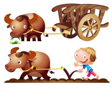 farmer buffalo cart farm