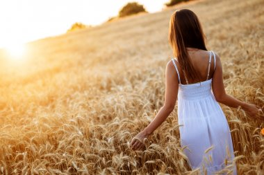 Romantic woman in fields of barley