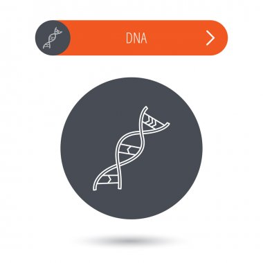 DNA icon. Genetic structure sign.