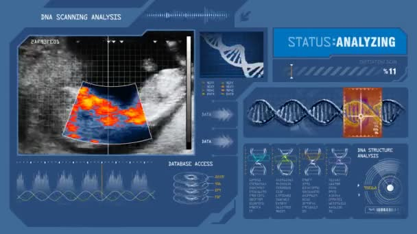 scan of human fetus in uterus