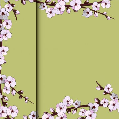 Illustration of japanese cherry blossom on pink background