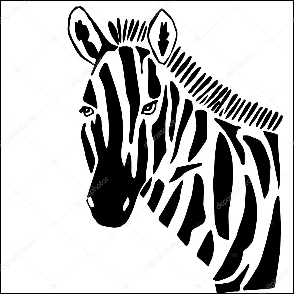 zebra zum ausmalen isoliert auf weißem hintergrund