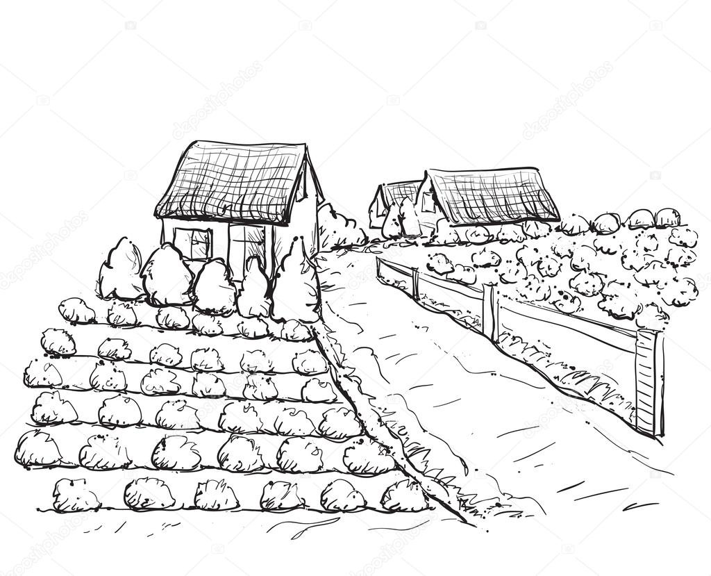 village houses sketch and nature