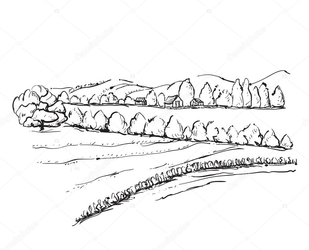 Hand drawn field sketch