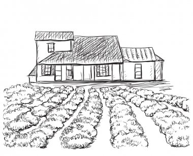 Hand drawn village houses