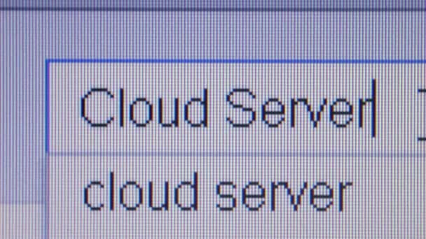 CLOUD SERVER: Macro Close Up Typing Search Query