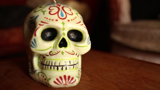DOLLY MOVE WITH SKULL: Shallow DOF dolly out and back