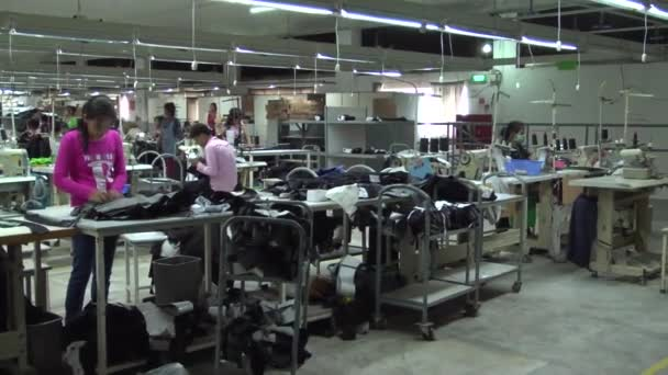 Textile Garment Factory Workers: WS pan interior factory with purple worker FG
