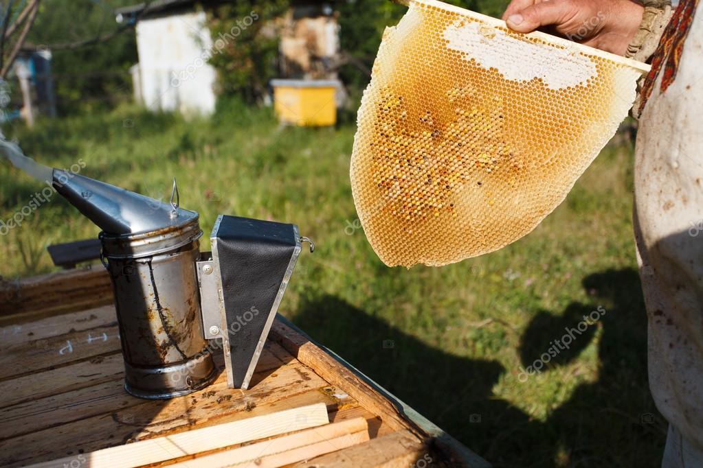 apiculteur 14
