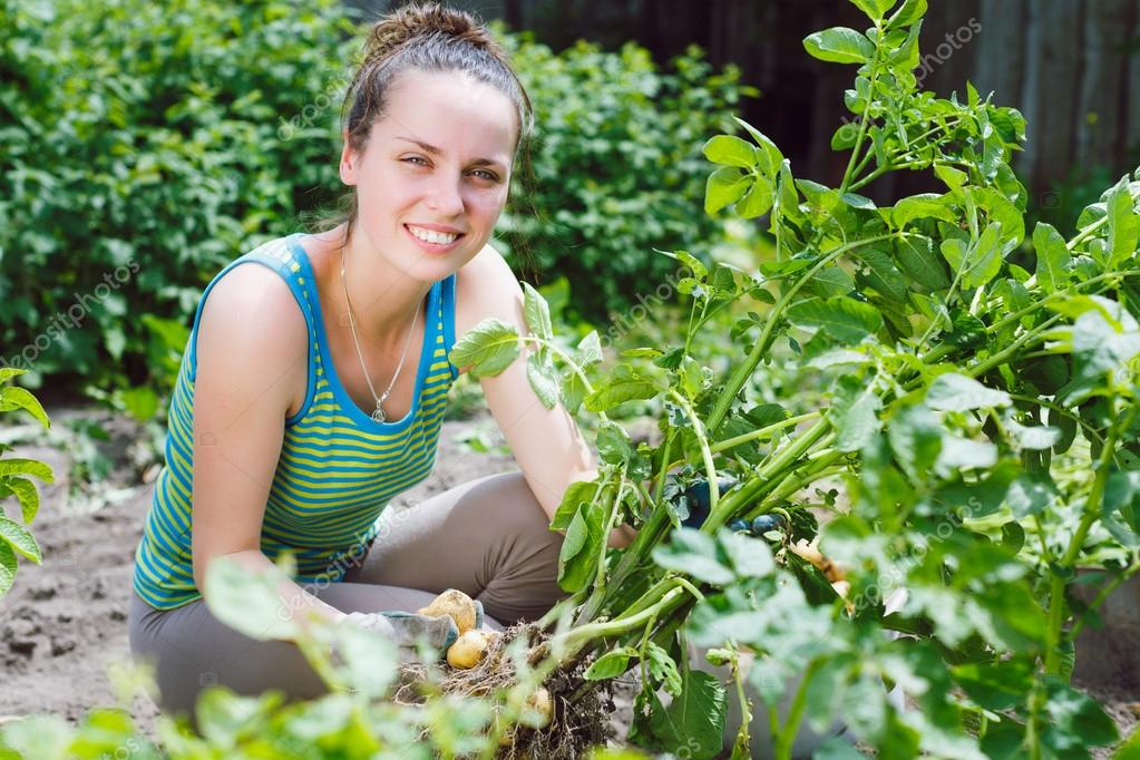 young woman harvesting potatoes
