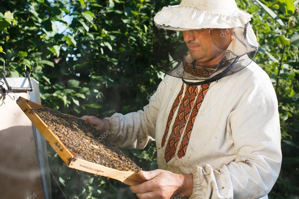 apiculteur 93