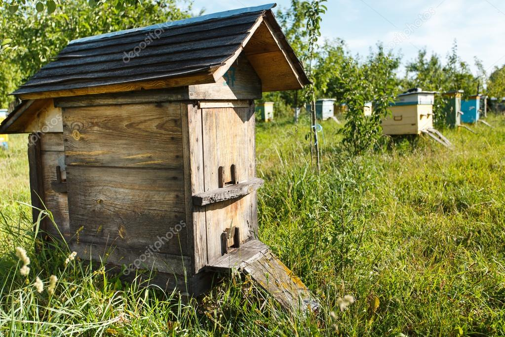 Wooden beehive with roof
