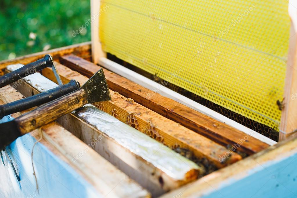 Colmena con diferentes marcos de nido de abeja — Foto de stock ...