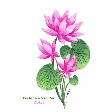 Original art, watercolor painting of pink lotus and nenuphar