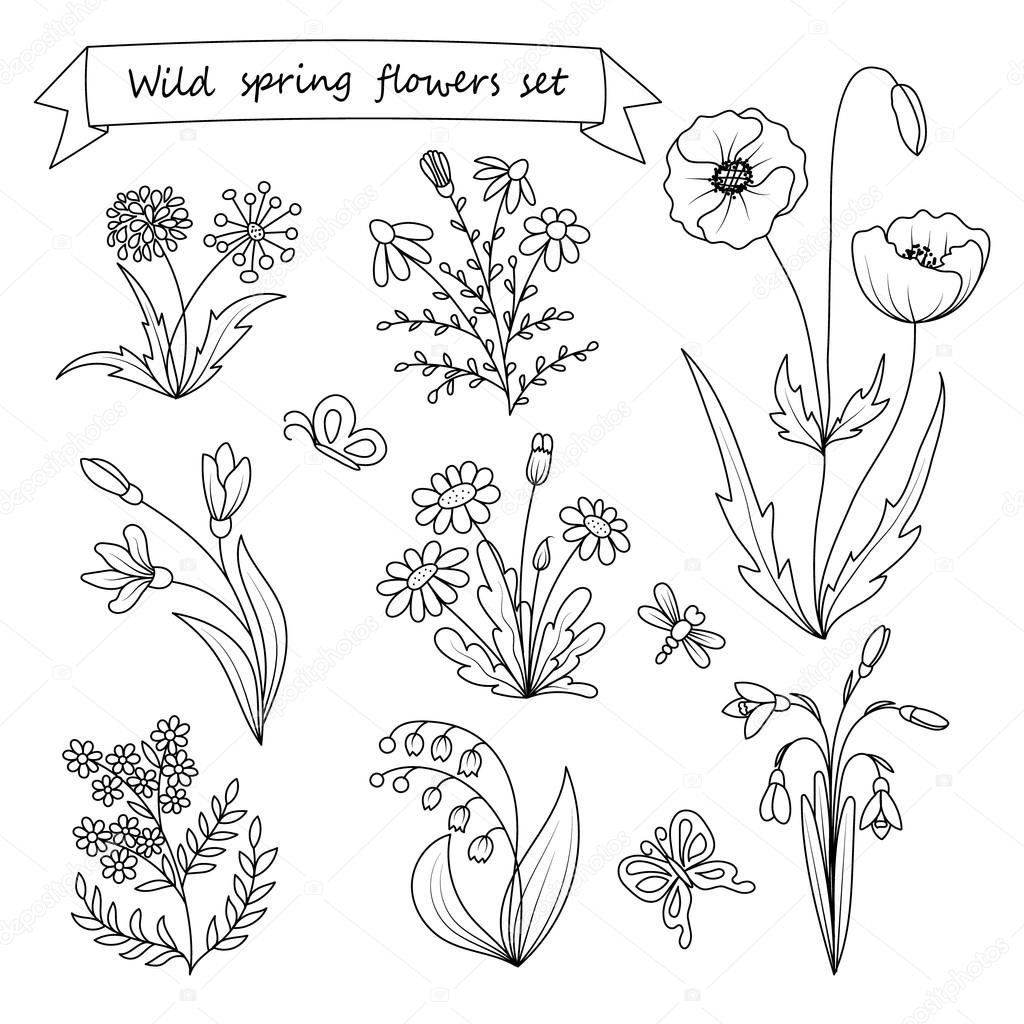 Set of hand drawn wild spring flowers vector illustration botany set of hand drawn wild spring flowers vector illustration botany vintage flowers black and white illustration in the style of engravings mightylinksfo