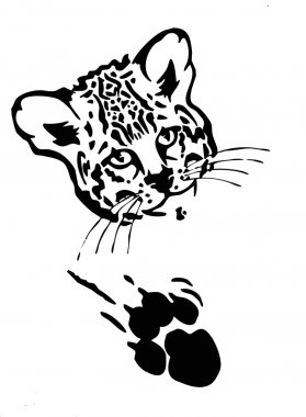 Leopard  face with paw and claw mark black