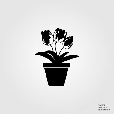 Flowers tulips. Flowers in a pot. Potted flowers. Floriculture hobbies. Beautiful flowers. Florists. Flowers silhouette.