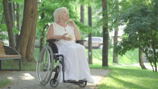 Weitwinkelaufnahme einer nachdenklichen, behinderten Seniorin, die im Rollstuhl im Freien sitzt und gesunden Apfel riecht. Porträt einer schönen behinderten kaukasischen Rentnerin, die lächelt und denkt. Behindertenkonzept.