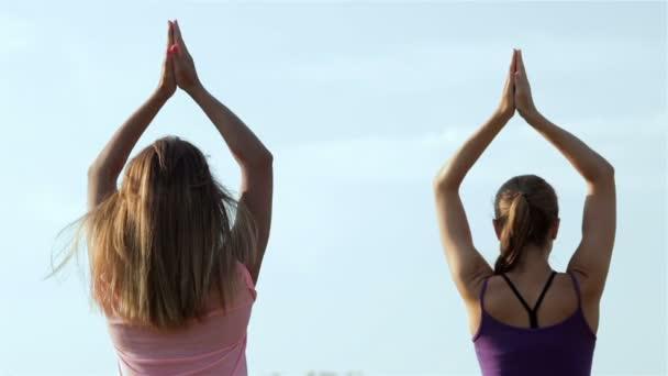 Dvě krásné dívky jógu v parku