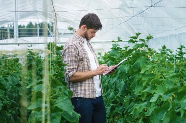 Guy with the tablet slowly inspect plants.