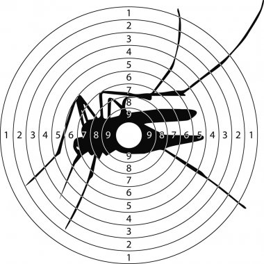 target shooting mosquito