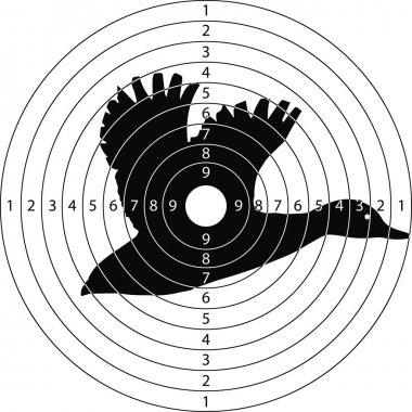 target shooting duck