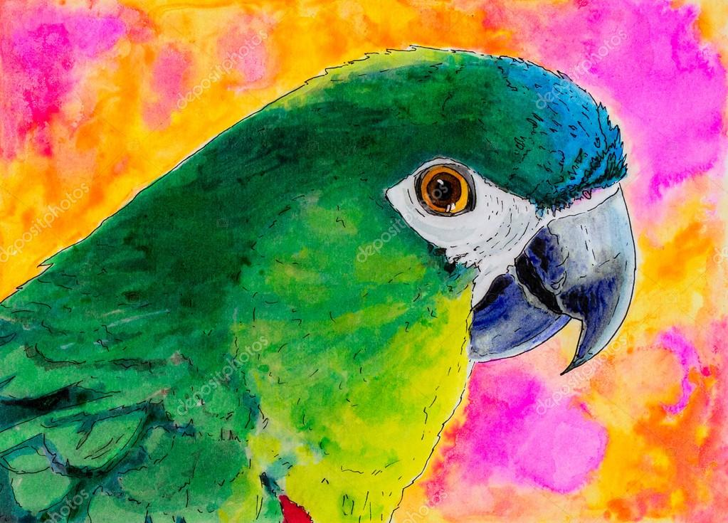 Pintura original de un loro verde —  Fotos de Stock