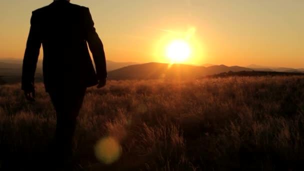 Businessman Walking Toward Prosperity