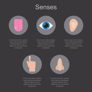 Five human senses on a dark background with space for your text.