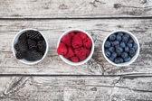 Divoké jahody, maliny, borůvky a brusinky v miskách