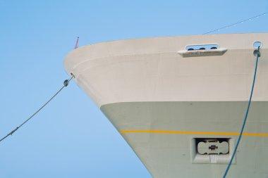 Netherlands, Rotterdam, Cruise ship