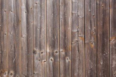 Wooden door, wood, background, copy space