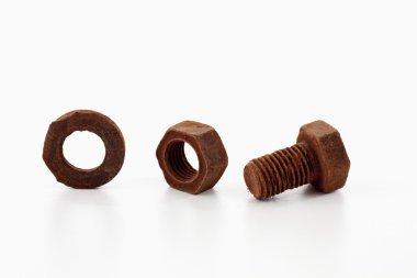 Rusty screw and nut