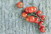 Italy, Tuscany, Magliano, Bunch of cherry tomatoes
