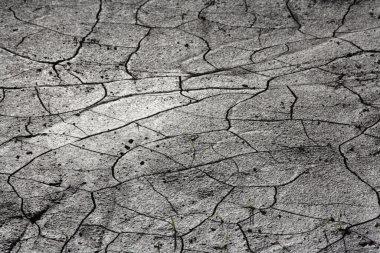 Germany, Bavaria, Irschenhausen, Cracked earth