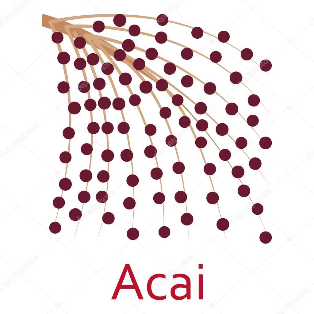 Super food icon. Acai. Vector illustration.