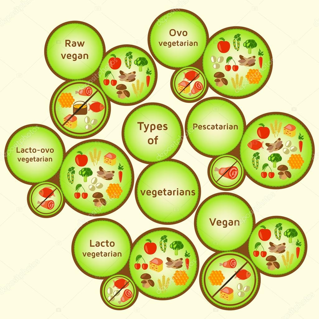 Dieta ovo lacto vegetariana