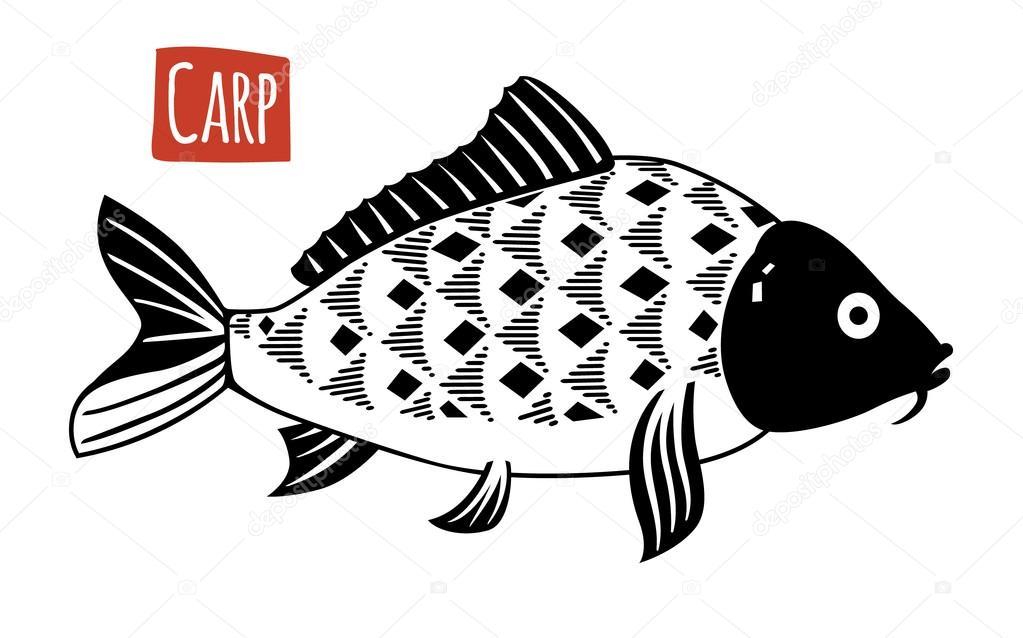 Carp Vector Cartoon Illustration Stock Vector C Ananci Art Gmail