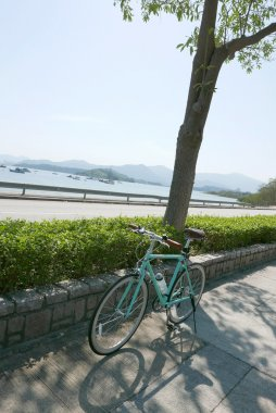 Green plants, mountain and retro mint green bicycle