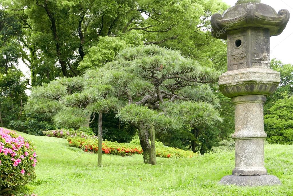 Japanese outdoor park stone decoration and pine trees Stock
