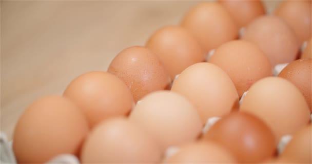 Tojás extruder tele friss tojás fekete háttér